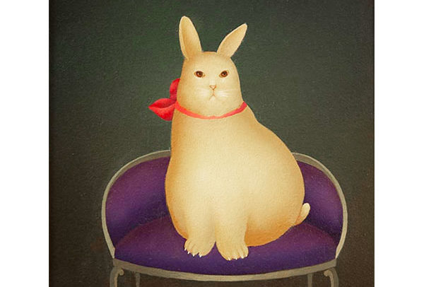 Rabbit on Purple Couch