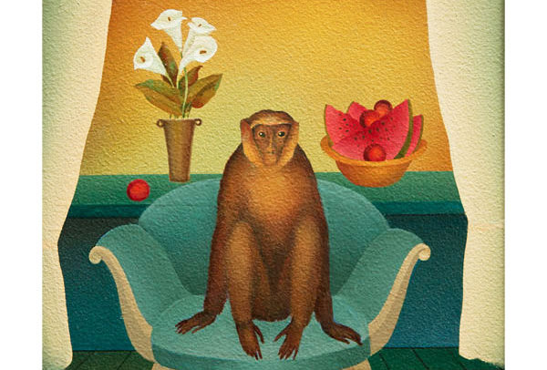 Monkey on Blue Couch